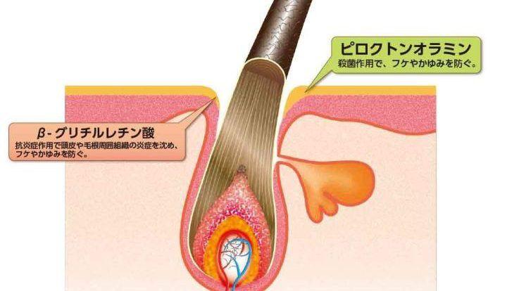 Cân bằng độ ẩm cho da đầu, giúp tế bào chân tóc phục hồi