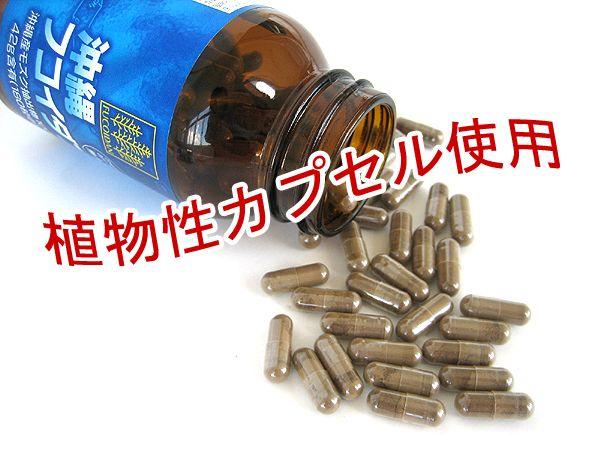 Fucoidan okinawa Thúc đẩy quá trình tự chết của các tế bào ung thư