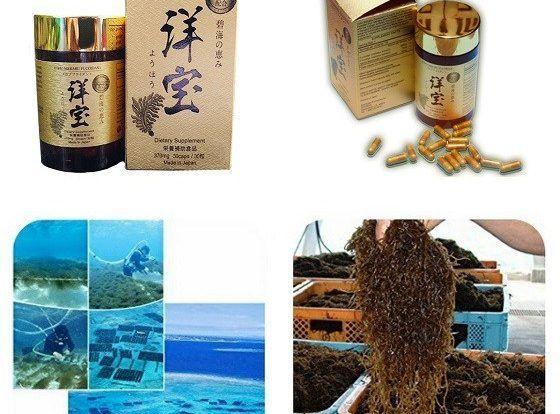 Fucoidan Yoko Mekabu có sự kết hợp của thành phần Fucoidan và Agaricus Blaze tốt cho nhiều đối tượng như người cao tuổi , người bị bệnh tim mạch , dạ dày , tiểu đương, trong đó người bệnh ung thư cũng dùng rất tốt