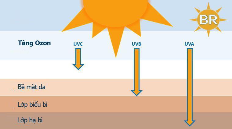 Tia UV là gì
