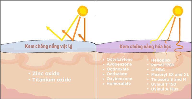 Chống nắng hóa học và chống nắng vật lý