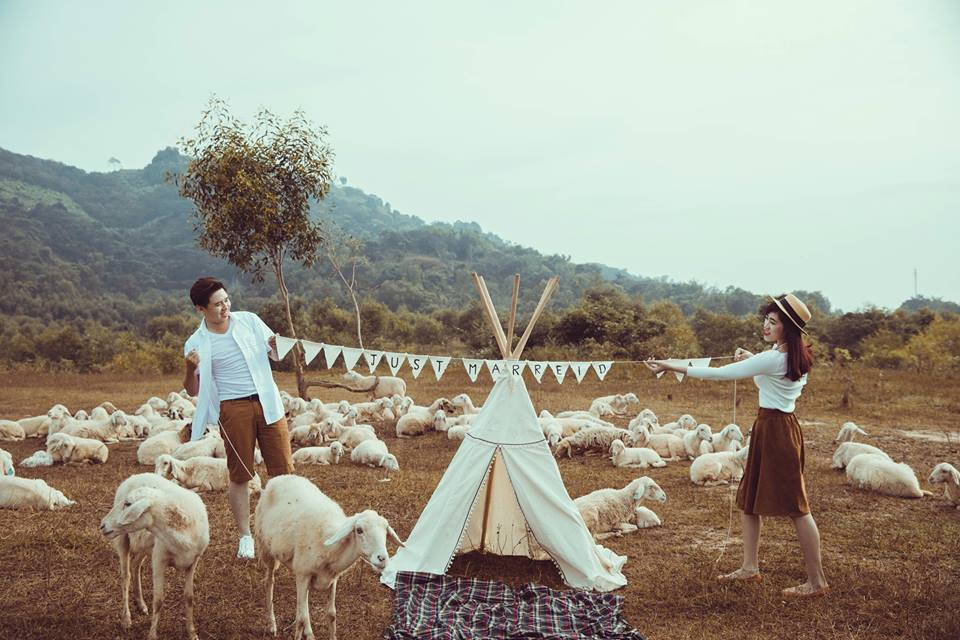 Chụp ảnh cưới Đồi Cừu
