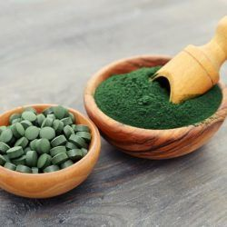 Tảo xoắn Spirulina làm giảm nồng độ cholesteron và giảm nhiễm mỡ máu