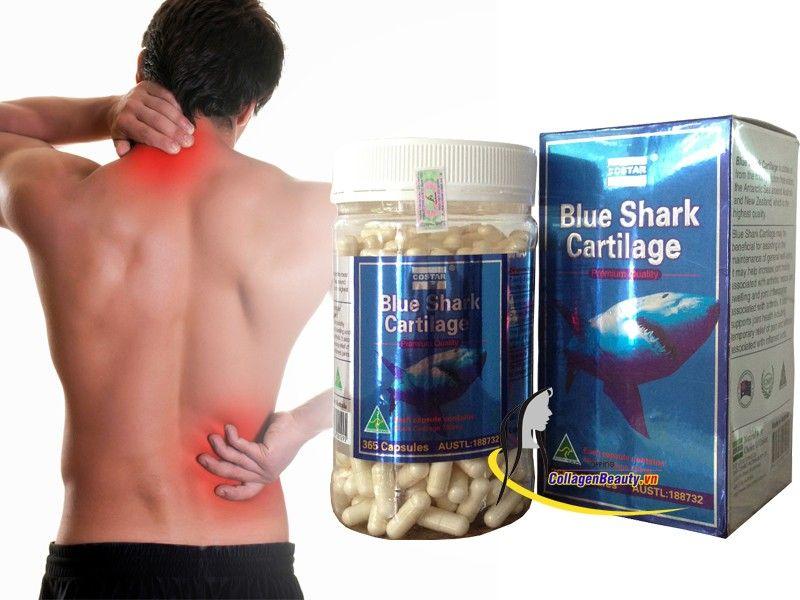 cá mập costar úc