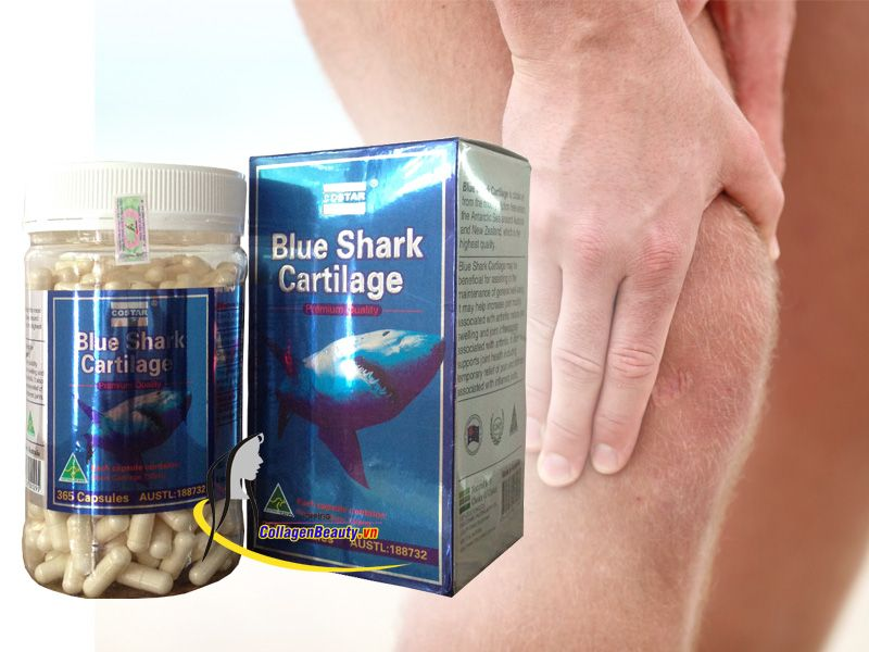 Công dụng của sụn cá mập costar
