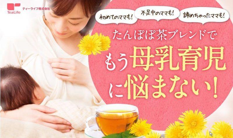 Tanpopo Tea Nhật Bản