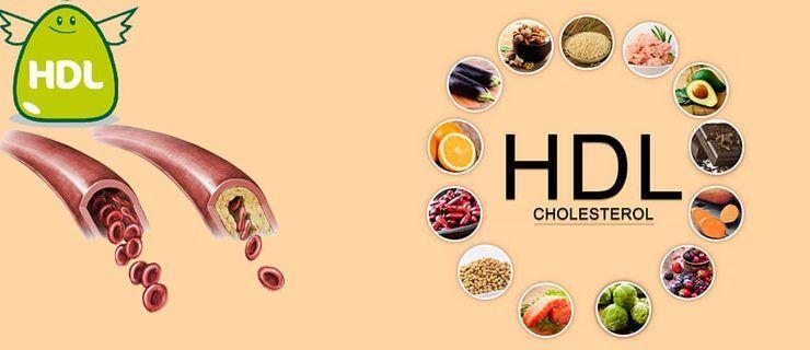 cholesterol là gì