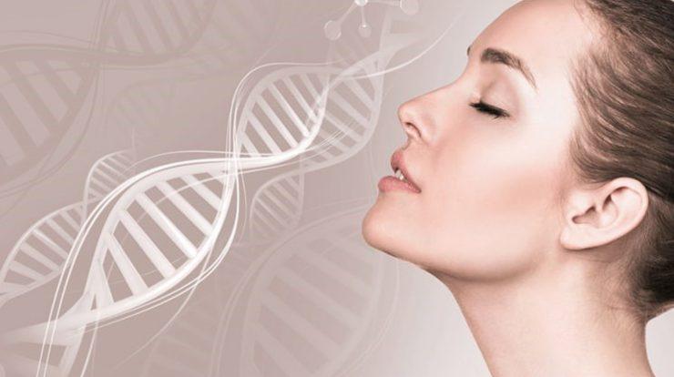 công dụng của collagen