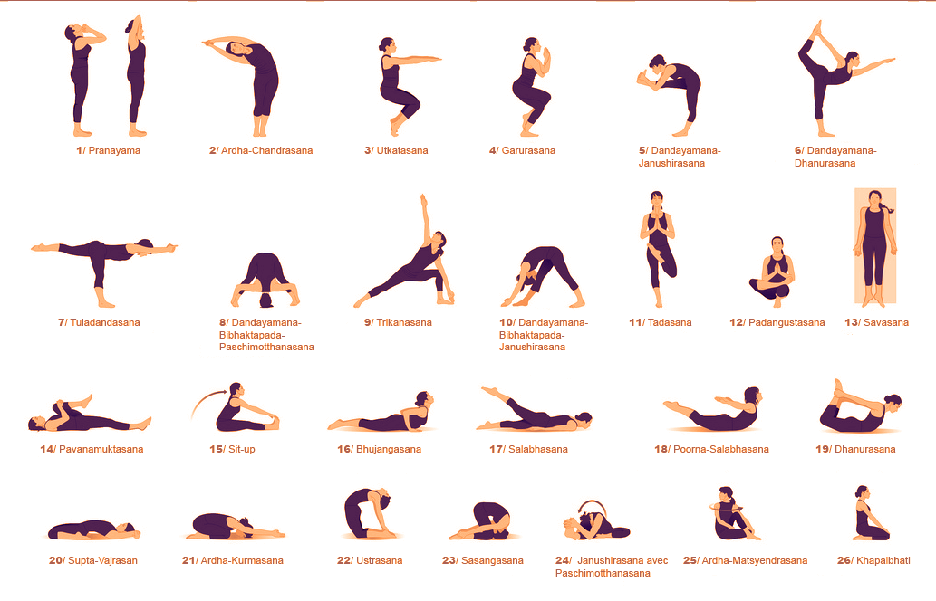 cac-tu-the-asana-trong-yoga-dai-dien